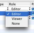 Editor / Viewer